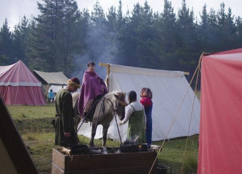Horse Visits